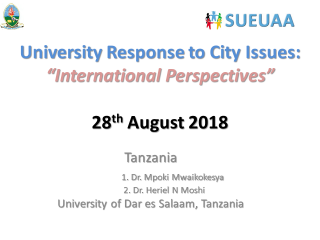 SUEUAA Interim Report - Dar-es-Salaam City